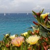 Velykos Rodo saloje: 7 n. 4* viešbutyje su viskas įskaičiuota ir skrydis tik 321 €/asm.