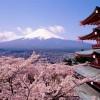 Pavasario kelionės: kodėl verta keliauti į Japoniją, Mianmarą ir Madagaskarą?