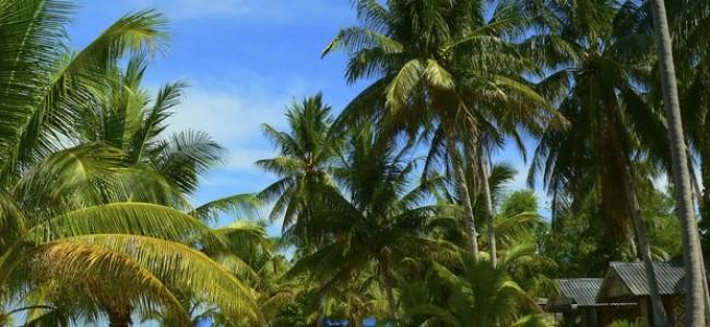 Phang Nga įlanka Tailande: nuostabioji Dž. Bondo sala bei unikalus Koh Panyee kaimelis