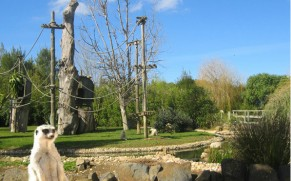 Pramogų ir atrakcionų parkai Algarvės regione