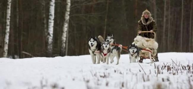 Ekstremalios žiemos pramogos Estijoje