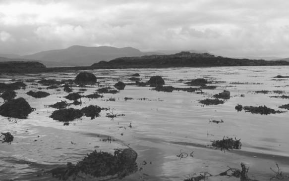 Kelionė į Škotiją – Fingalo ola Stafos saloje