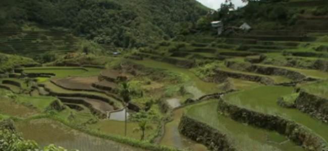 Banaue ryžių terasos Filipinuose – keliautojų pripažintos pasaulio stebuklu
