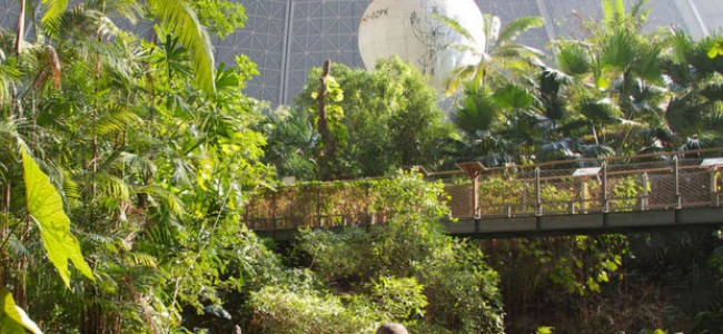 Tropikų sala šalia Berlyno – nesibaigiančių pramogų pasaulis
