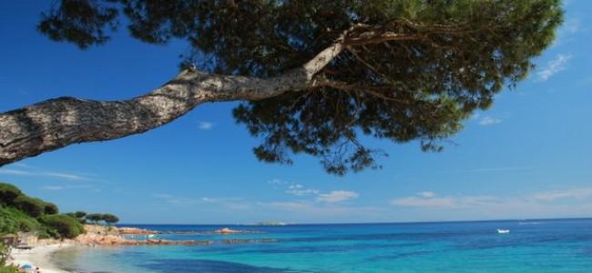 Kur keliauti geriau: Korsika ar Sardinija