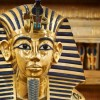 Kruizas Faraonų Lobiai Egipte iš Marsa Alamo tik 499 €/asm. Skrydis iš Lietuvos įskaičiuotas į kainą!