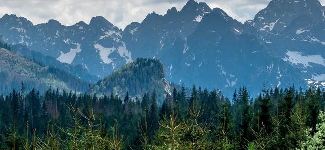 Slovakijos Rojaus nacionalinis parkas – dieviška aplinka, nepaliesta civilizacijos gniaužtų
